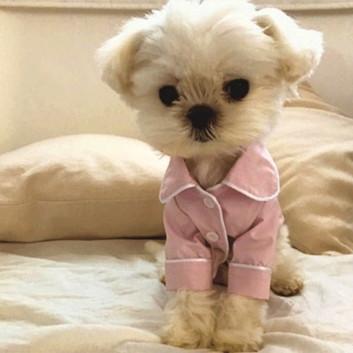 Fashion Dog Pajamas