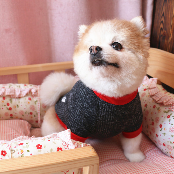 Lovely Puppy Outfit