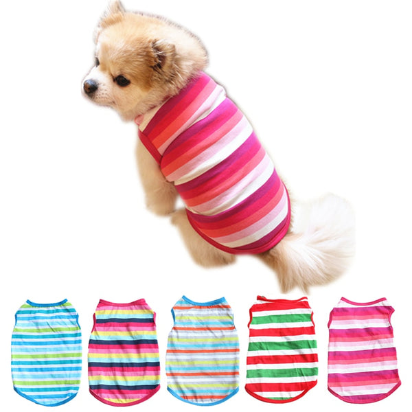 Colorful Striped Dog T-Shirt