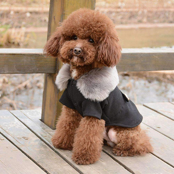 Wool Fur Winter Dog Coat