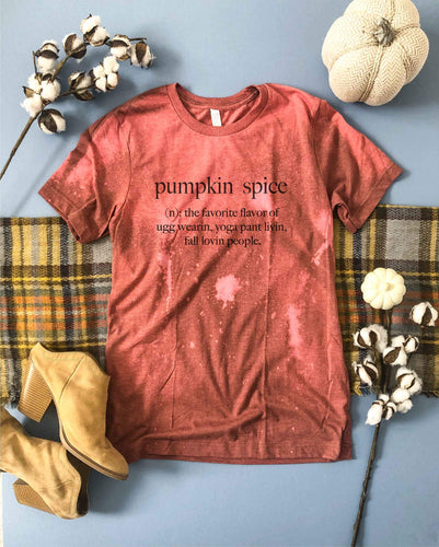 Pumpkin spice definiton bleached tee Fall bleached tee Bella canvas 3001 heather clay bleached