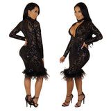Francine Feather Mesh Dress