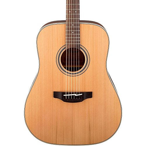 Takamine GD20 Dreadnought Acoustic Guitar Natural