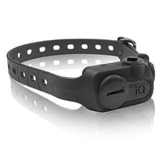 Dogtra IQ-BARK-BLK iQ No Bark Collar Black - DogTrainerStore