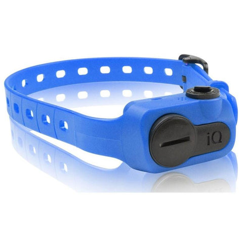 Dogtra IQ-BARK-BLU iQ No Bark Collar Blue - DogtraWorld