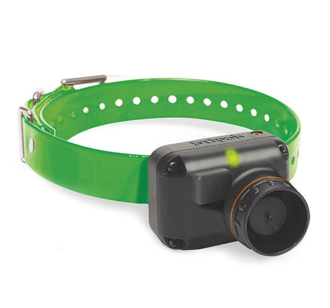 Dogtra 2700T&B Additional Receiver In Green - DogTrainerStore