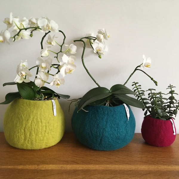 Small Felted Wool Fuchsia Plant Pot