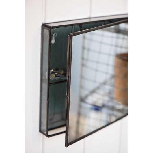 Wall hung mirror with storage