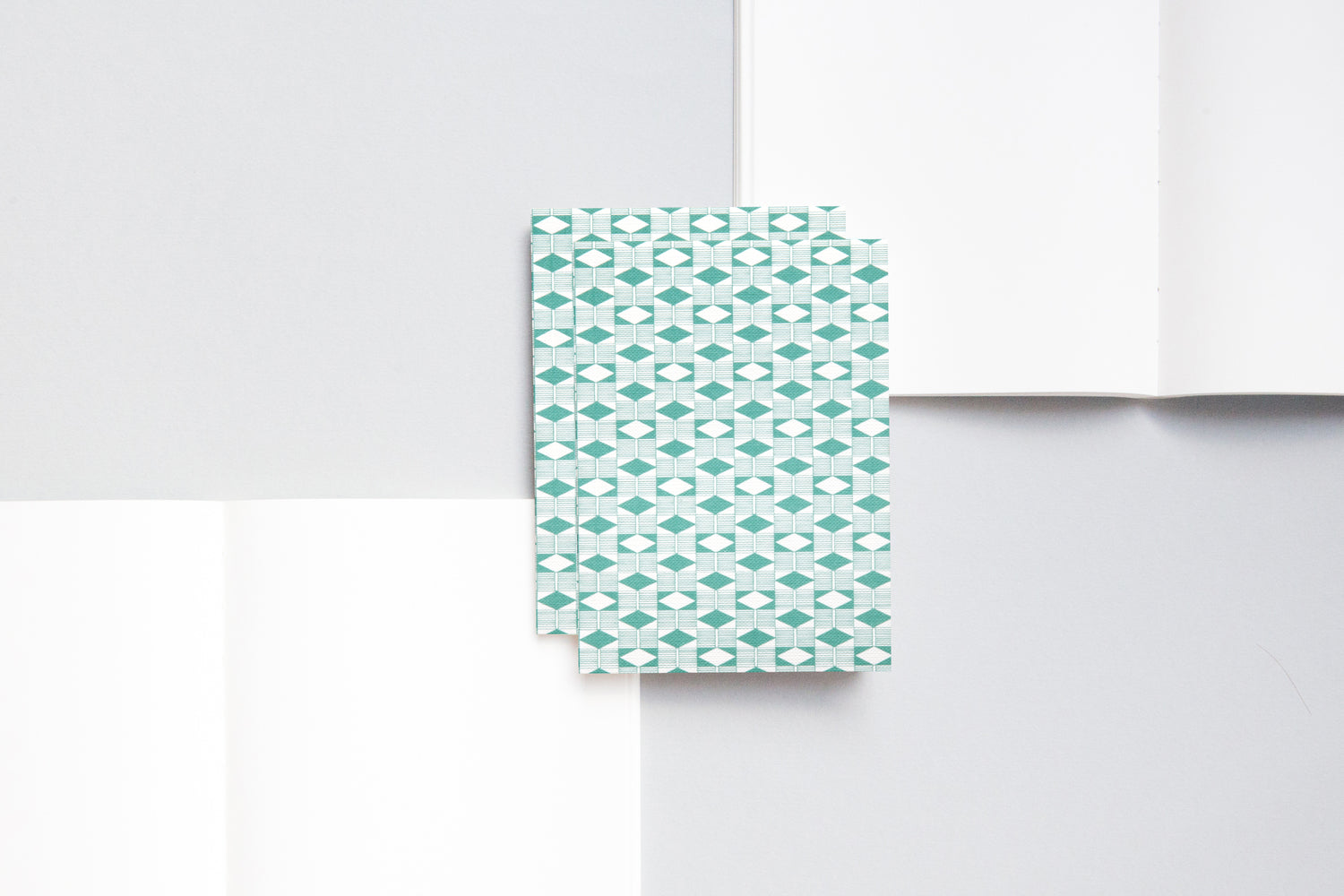 A6 notebook with plain pages and an embossed cover printed in green