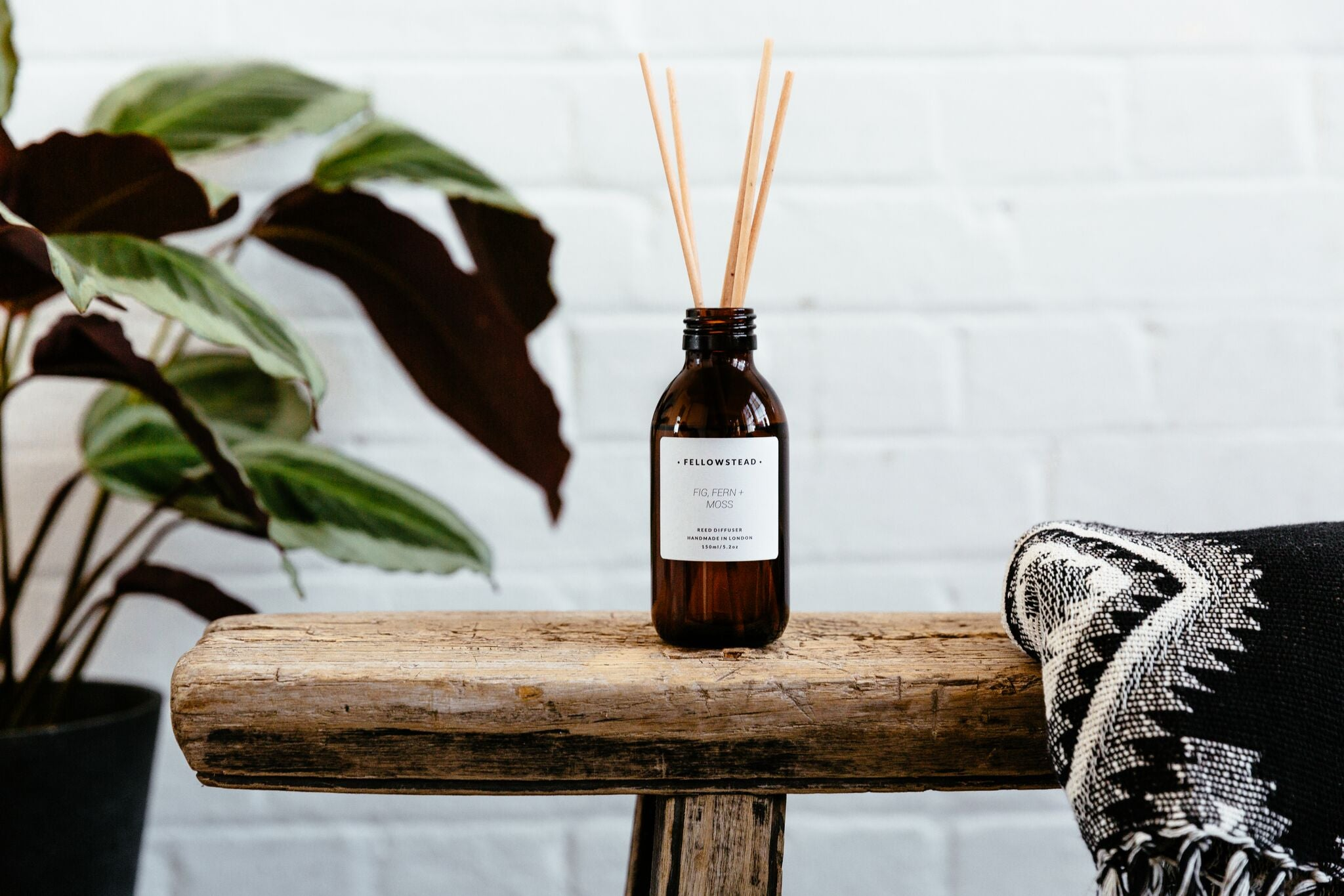 Luxury Fig, Fern + Moss Reed Diffuser - Handmade in the UK