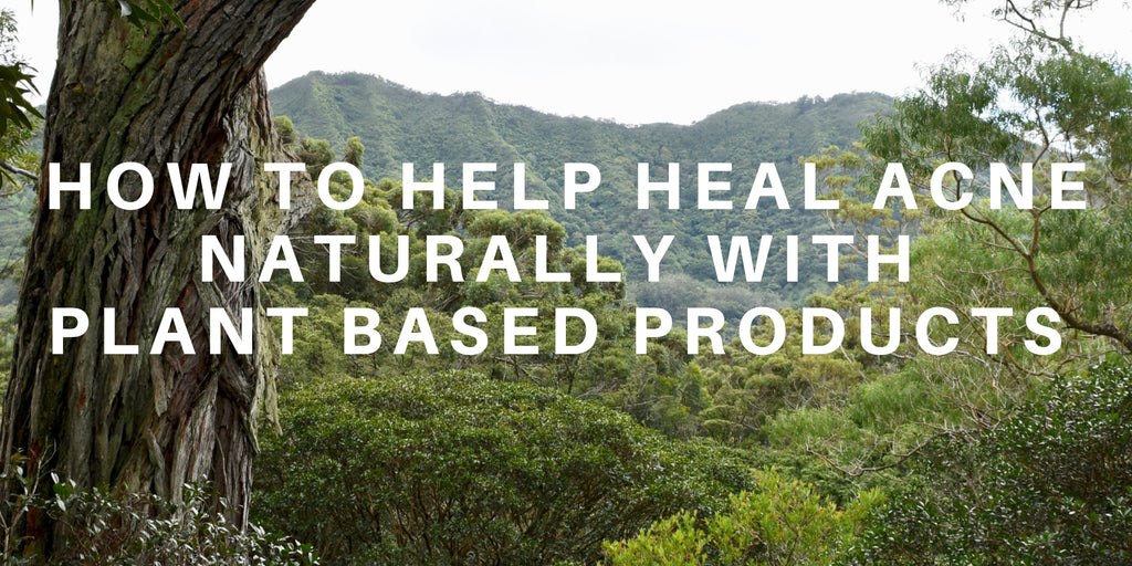 How to Help Heal Acne with Plant-Based Products