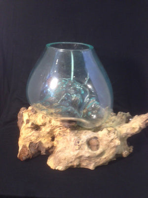 Melted Glass Bowl on Driftwood - Michael's Gems and Glass