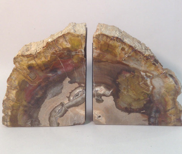 Petrified Wood Bookends - Michael's Gems and Glass