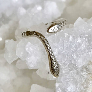 Slightly adjustable two headed snake ring .  By Georgia Varidakis