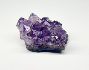 One Amethyst Raw Crystal