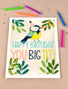Happy Birthday you tit Birthday Card