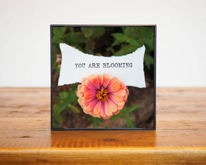 You Are Blooming Zinnia Artwork In Frame on Wood Table Erin Plewes Creative Art