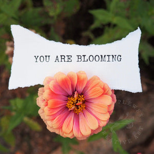 """You Are Blooming"" Positive Affirmation Floral Nature Art 