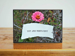 """You Are Resilient"" Pink Zinnia Inspirational Artwork 