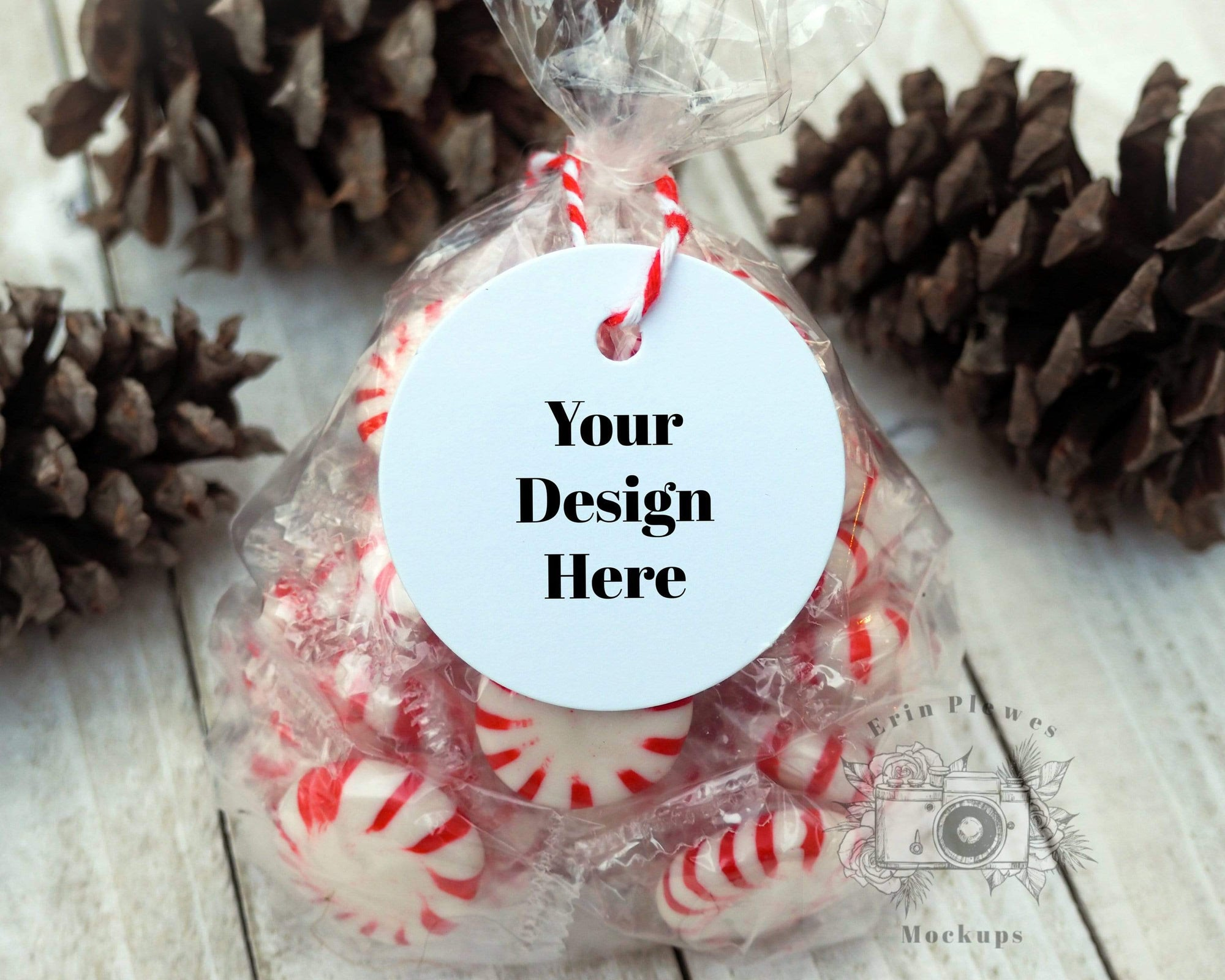 Erin Plewes Mockups Christmas gift tag mockup, Gift bag mock-up for party favor template stock photo, Jpeg instant Digital Download