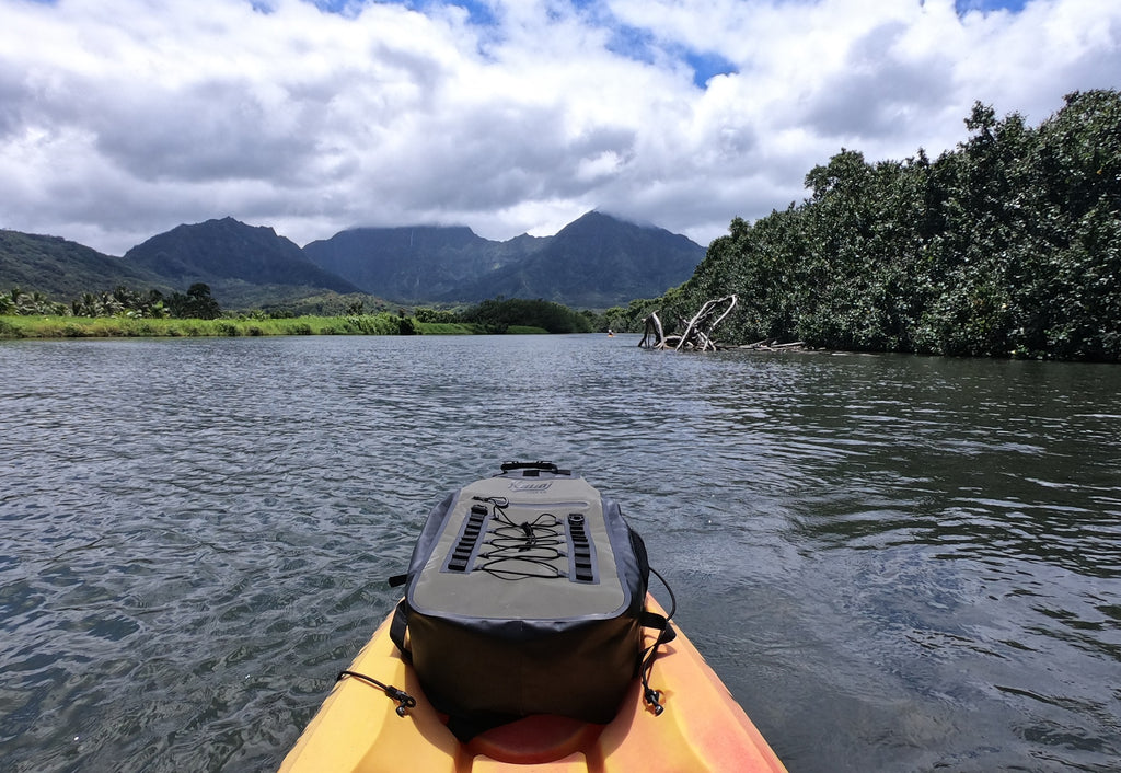 Kayak the Hanalei River
