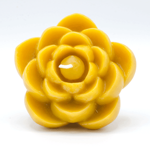 Beeswax Candles- Lotus Flower - 100% Pure Beeswax