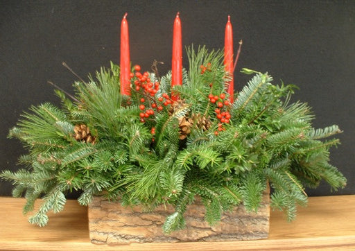 "18-20"" Centerpiece in Pine Bark Box"