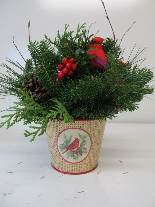 Burlap Cardinal Metal Can Arrangement