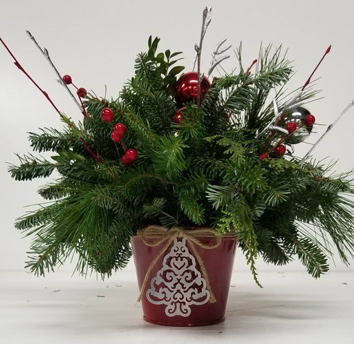 Red Christmas Tree Tin Arrangement