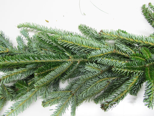 Fraser Fir Garland - Per Foot