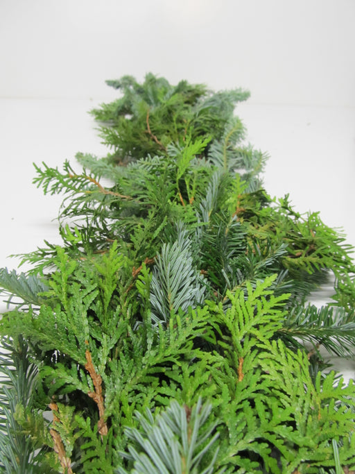 Fraser Fir and Cedar Garland - Per Foot