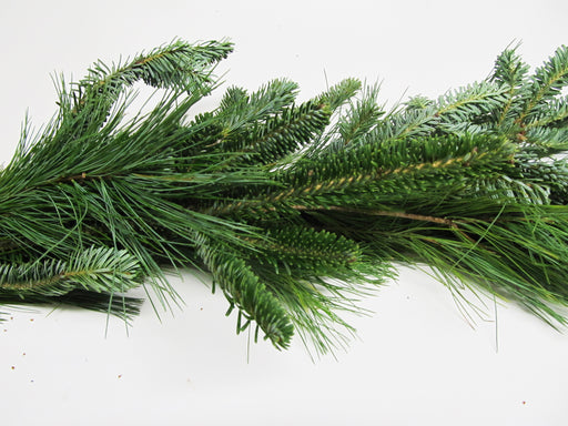 Fraser Fir and White Pine Garland - Per Foot