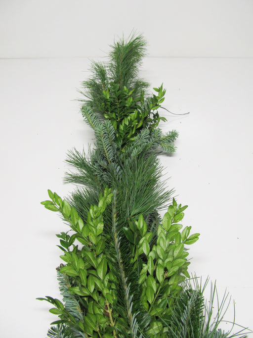Fraser Fir, White Pine & Boxwood Garland - Per Foot