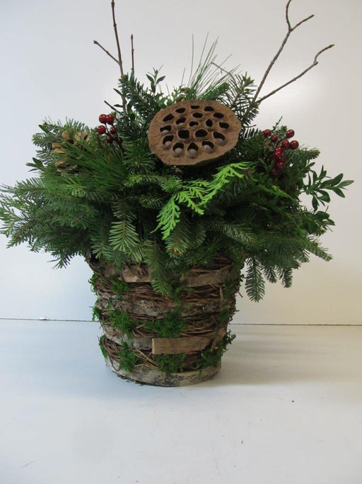 Birch Bark Moss Arrangement