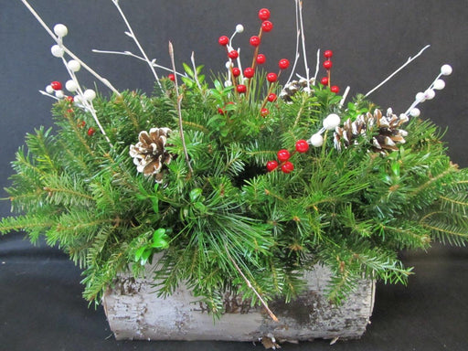 White Birch Log Planter Arrangement