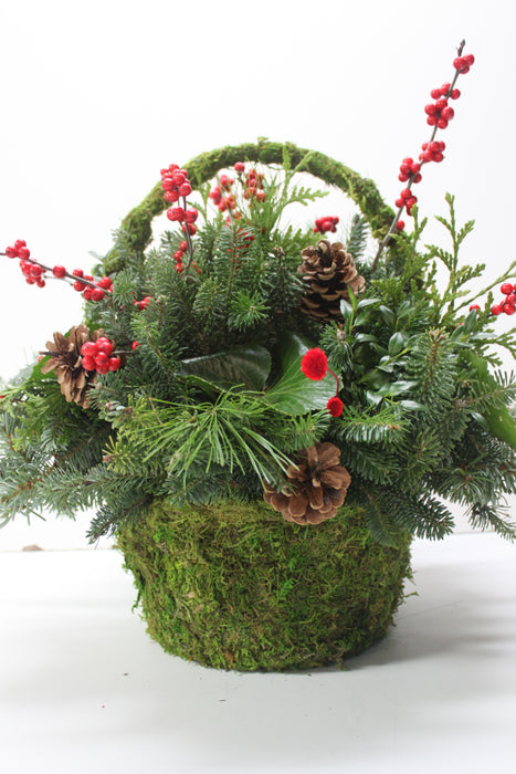 Moss Basket with Handle