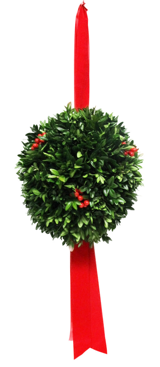 "8"" Boxwood Christmas Ball"