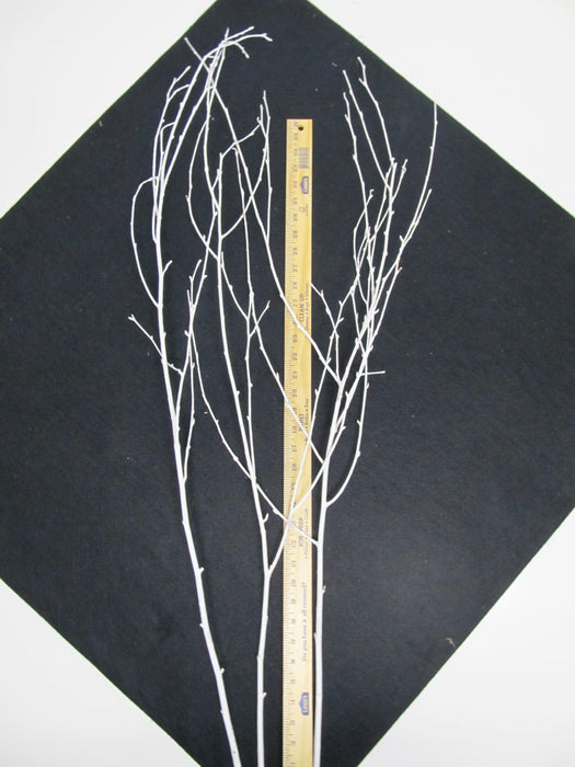 Painted White Birch Branches - Per Branch