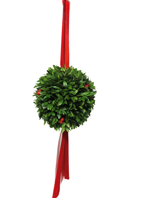 "6"" Boxwood Christmas Ball"