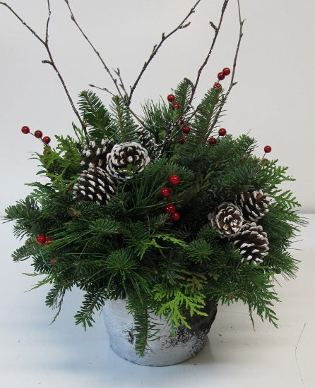 """White Christmas"" Birch Pot Arrangement"