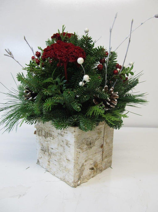 """White Christmas"" Square Arrangement"