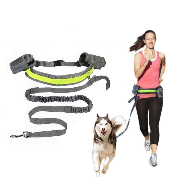 Buy Hands Free Dog Leash Online