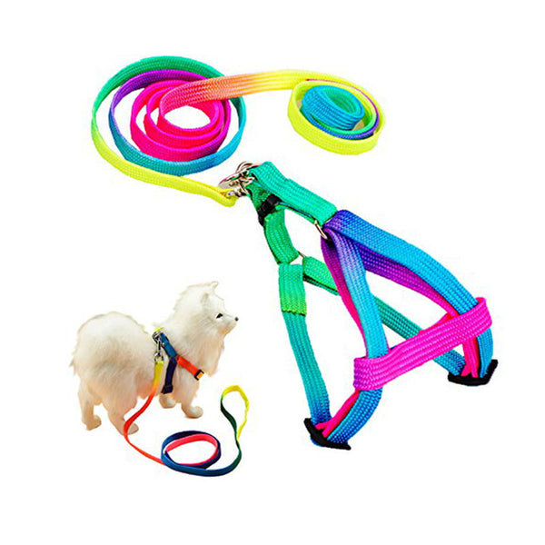 Adjustable Rainbow Nylon Cat Leash & Harness