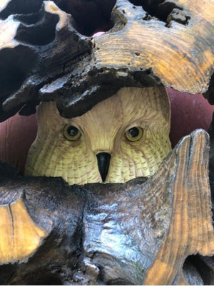 Wooden Owl Carving in Hallowed Out Log