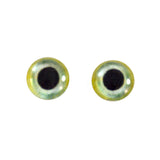 green bird glass eyes