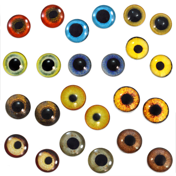 Bulk Lot 12 Pairs of 10mm Bird Glass Eyes