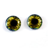 Blue and Yellow Fantasy Glass Eyes