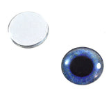 16mm crow glass eyes