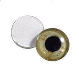 16mm eagle eyes