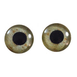 16mm eagle glass eyes